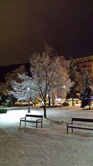 Frozen Nature Amazing View Brasov