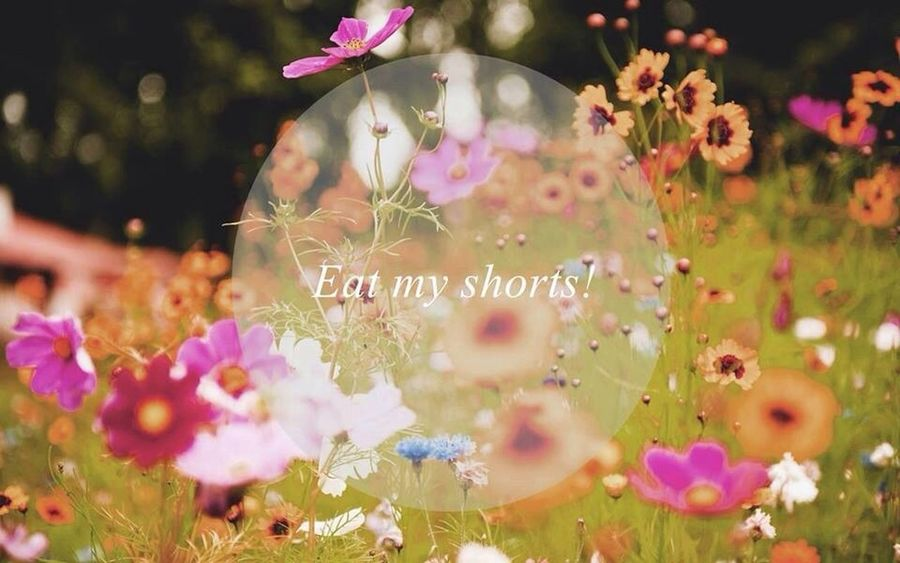Yeah baby Eat My Shorts Nature Flowers Colorful