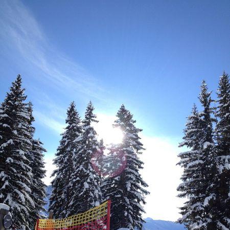 Skylining Snowboarding Snow Winter Kleinwalsertal Blue Sky Nature
