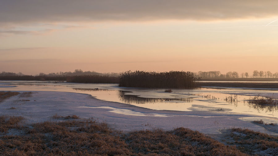 Havel River Havelland Germany Hochwasser Naturpark Westhavelland Strodehne Beauty In Nature Cold Temperature Day Lake Landscape Nature No People Outdoors Reflection Scenics Sky Snow Sunset Tranquil Scene Tranquility Travel Destinations Tree Water Winter