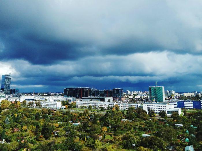 10floor Storm