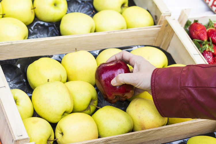 Apples Food And Drink Healthy Eating Food Fruit Wellbeing Freshness One Person Human Hand Apple - Fruit Human Body Part Hand Container Real People Holding High Angle View Apple Large Group Of Objects Day Lifestyles