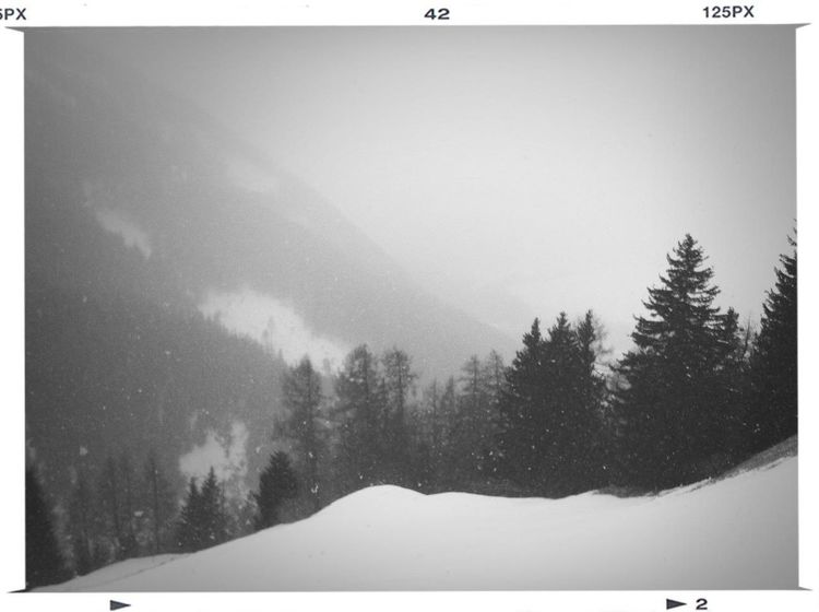 Skifahren Oder Nicht Skifahren?