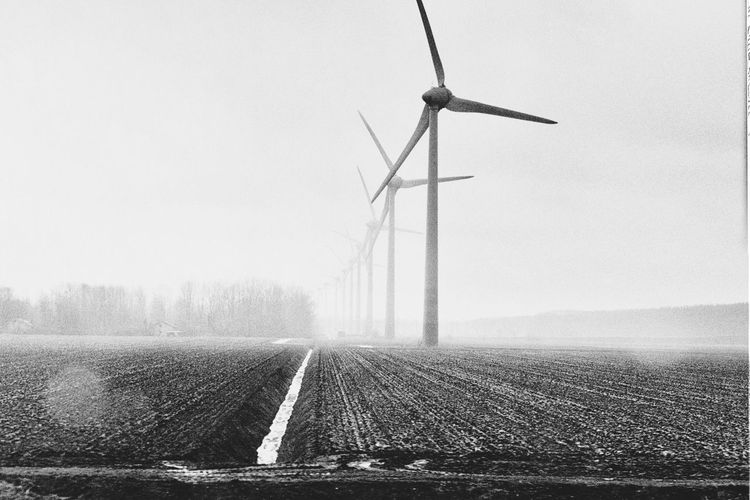 Windmills Black And White Photography Fine Art Photography Black And White Bw_collection Blackandwhite Open Edit Showcase April Ecology Windmill Fields The Great Outdoors With Adobe Monochrome Photography