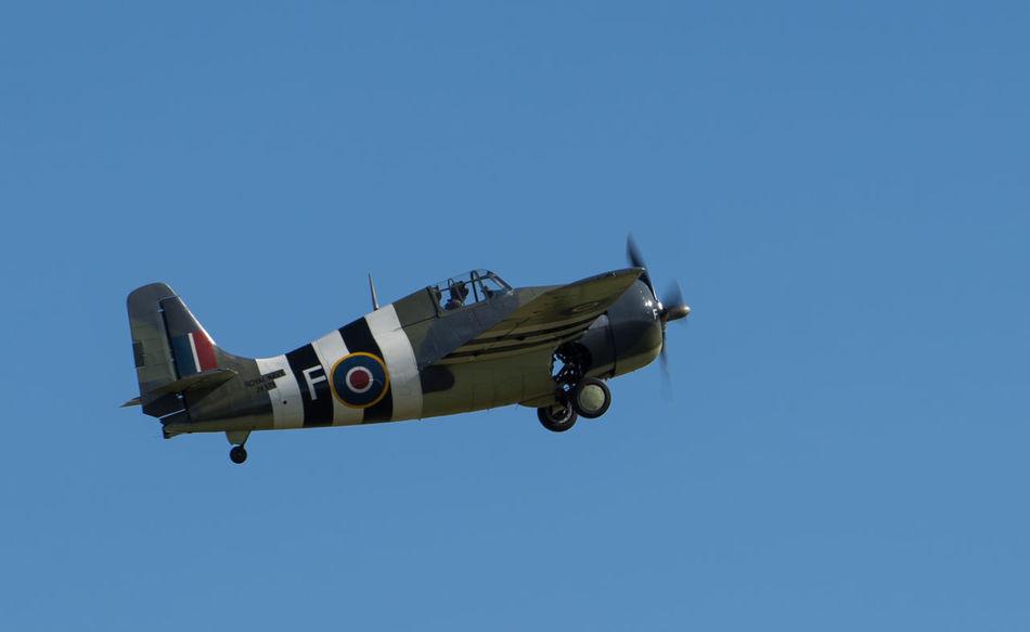 Grumman Wildcat FM-2 Duxford Air Show Duxford Imperial War Museum Plane Raw SONY A7ii Aircraft Wing French Manfrottobefree Spotter Warbird Ww2 Zeiss