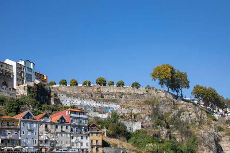 Ribeira district of Porto from Douro river Architecture Blue Building Building Exterior Built Structure City Clear Sky Copy Space Day Growth House Land Nature No People Outdoors Plant Residential District Sky Sunlight TOWNSCAPE Tree