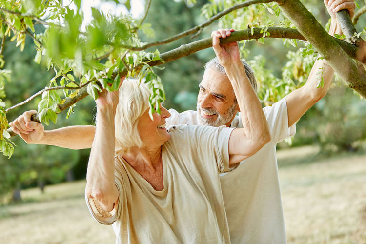 Senior Couple Holding Branches At Park