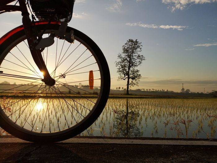Bicycle wheel on field against sky at sunset