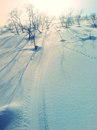 I love this! Winter Snow Silhouette Snowboarding