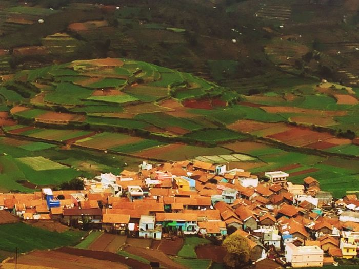 Village Step Farming Farming Old Houses Greenery Highlights From Aerial Shot View From Above Brown Roofs India