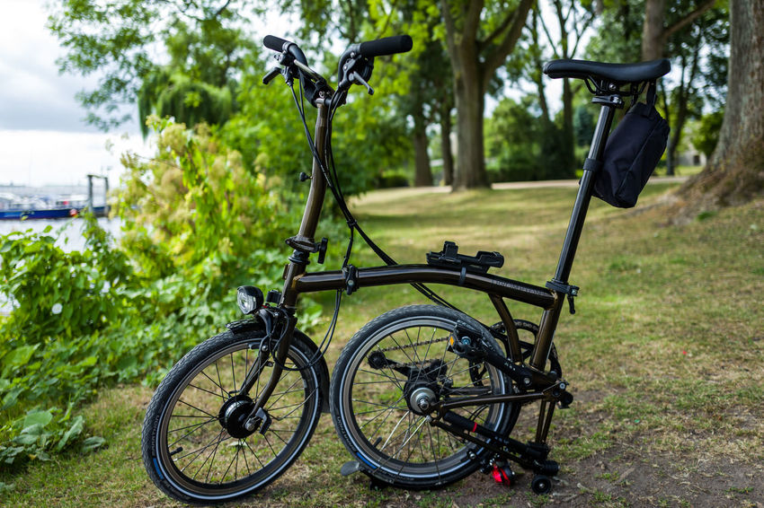 Brompton Black Lacquer edition in Hamburg Brompton Bicycle Close-up Day Field Focus On Foreground Grass Green Color Land Land Vehicle Metal Mode Of Transportation Nature No People Outdoors Park Plant Stationary Transportation Tree Wheel