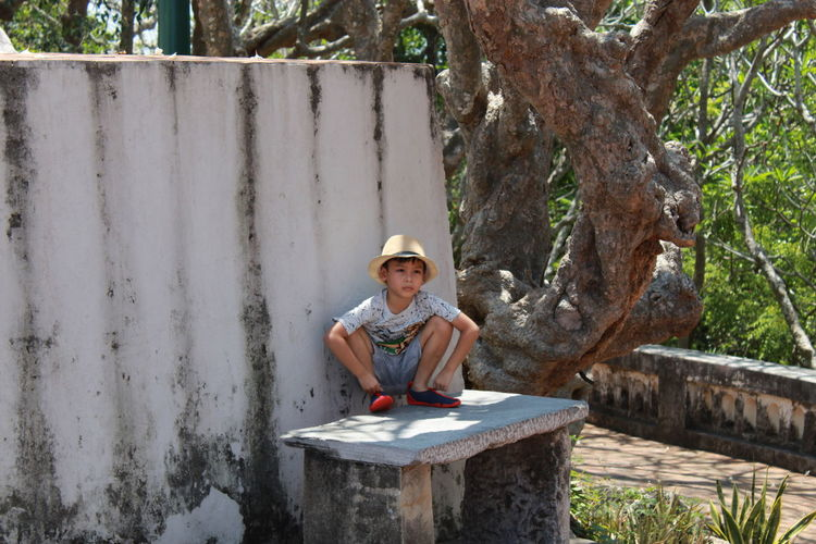 Boy crouching on seat against tree
