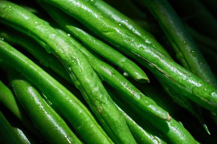 Beans Green Beans Abundance Backgrounds Close-up Day Food Food And Drink Freshness Full Frame Green Color Green Vegetables Healthy Eating Healthy Food Indoors  Nature No People Vegetable Water Wet
