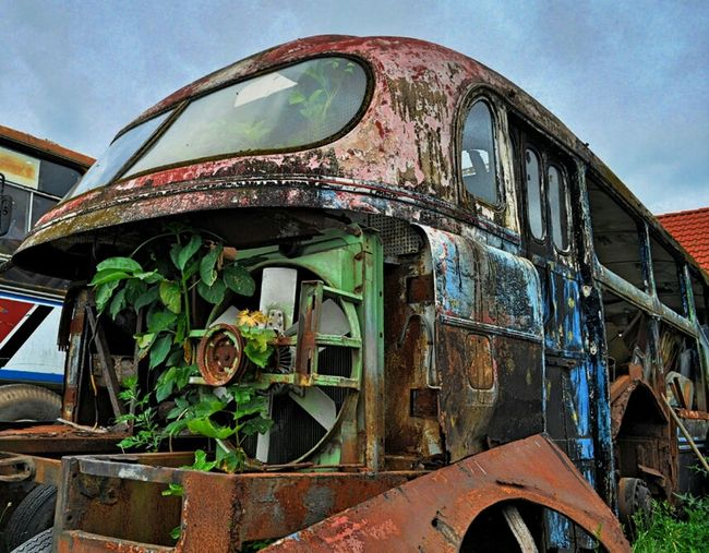 wrecked bus, spotted at the island Usedom (D) Rust Bus Scrap Scrapyard