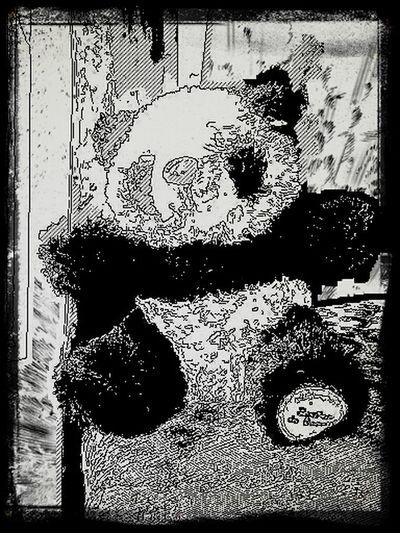 pandamy stuffed friend :) Panda Stuffed Animals
