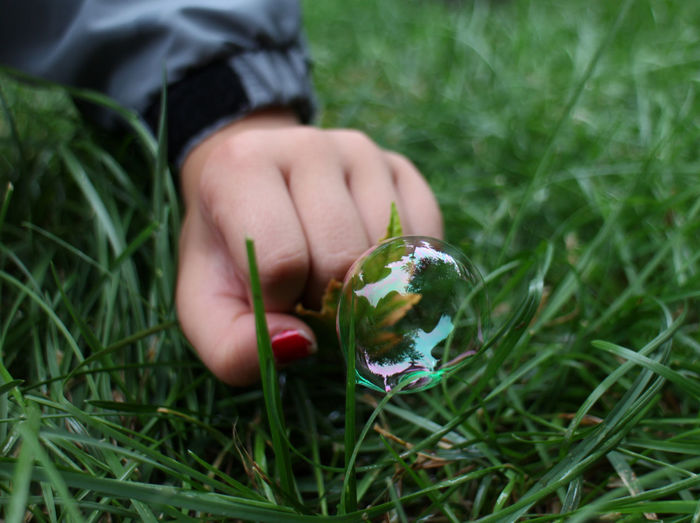 Child Hand With Bubble On Grass