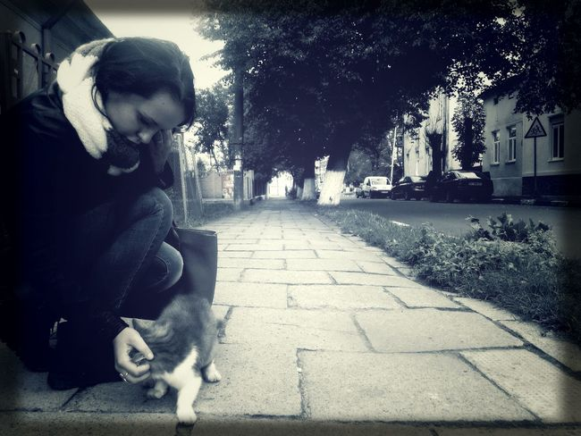 Friend with Lonely Cat in Blackandwhite