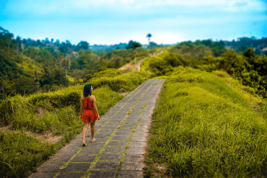 Lost In The Landscape Ubud, Bali Beauty In Nature Girl Walking On Path. Grass Green Color Landscape Nature One Person Outdoors Scenics Walking An Eye For Travel