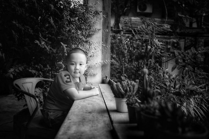 Side view portrait of cute boy sitting by plants at backyard
