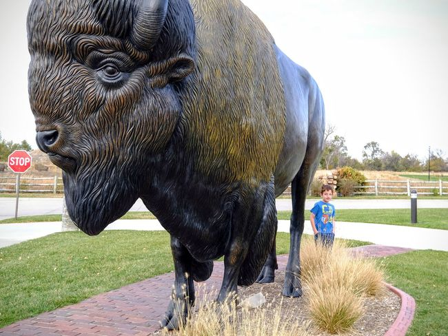 Photo essay - A day in the life. Cabela's Outfitters Kearney, Nebraska November 6, 2016 A Day In The Life America Bison Buffalo Camera Work Day Eye4photography  EyeEm Best Shots EyeEm Gallery Middle America Nebraska On The Road One Animal Outdoors Photo Diary Photo Essay Roadside Roadside America Roadtrip Statue Storytelling Tourism Travel Photography Traveling Visual Journal