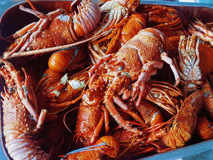 High angle view of lobsters in basket