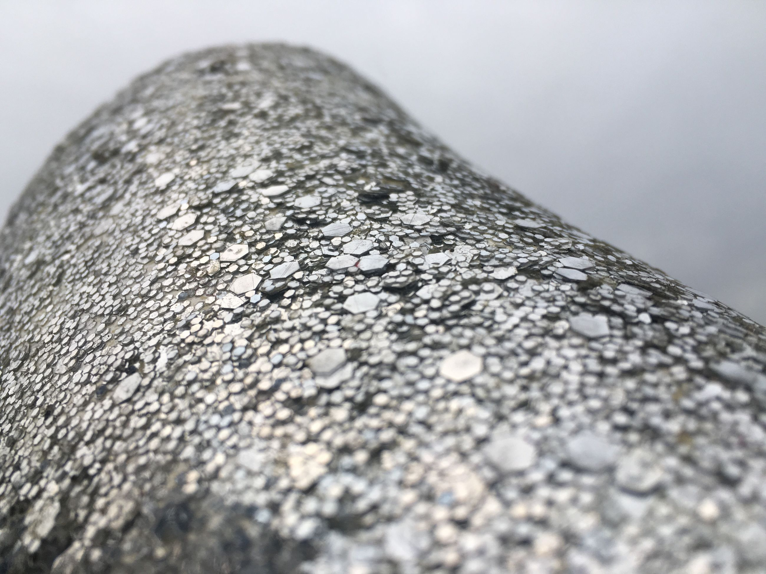 close-up, no people, textured, water, day, outdoors