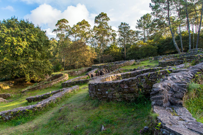 Ancient Architecture Ancient Civilization Ancient Ruins Archeological Site Archeology Architecture Castro Day Forest Forest Walk Galicia, Spain Grass Nature No People Outdoors Prehistoric Preromanesque Remains Remote Ruins Sky Stones Sunny Travel Destinations Tree