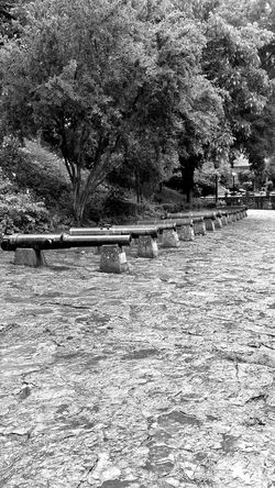 Black And White Cannon Istanbul Turkey Estambul Rumeli Hisarı Nature Historical Ottoman Military Hello World First Eyeem Photo Taking Photos History In Nature White And Black