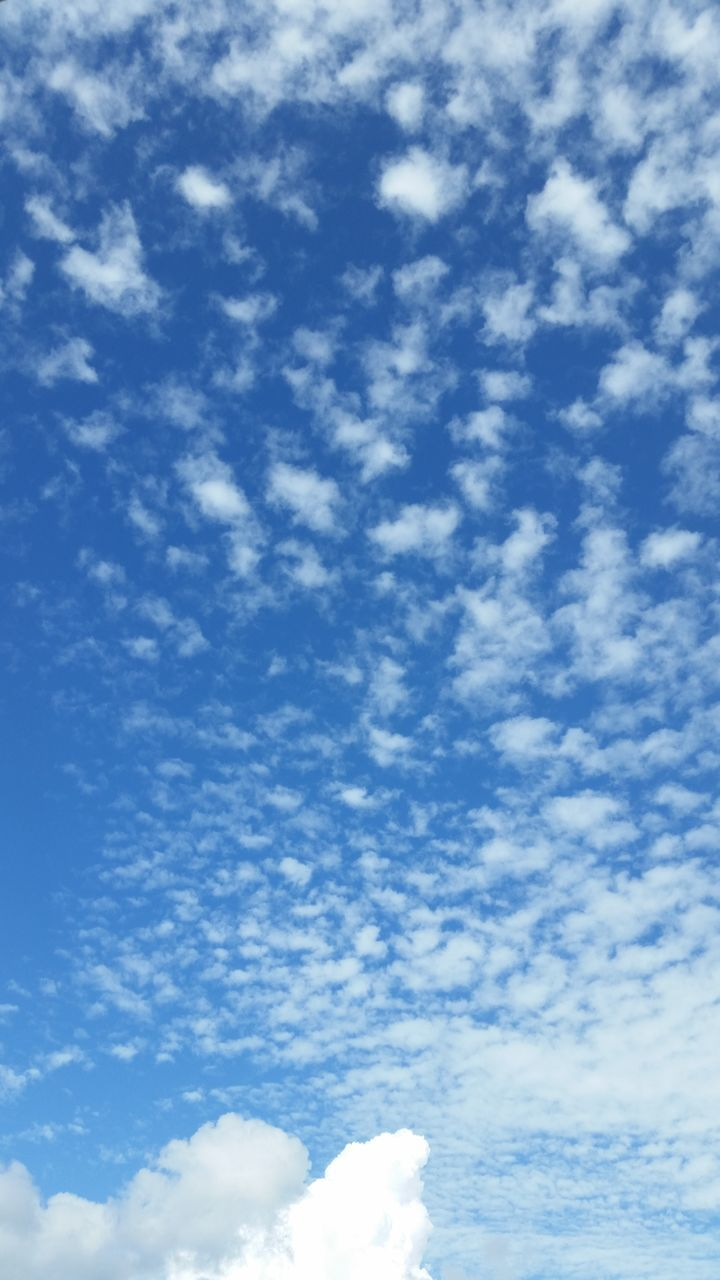 cloud - sky, sky, low angle view, beauty in nature, blue, sky only, nature, cloudscape, scenics, tranquility, day, backgrounds, no people, tranquil scene, outdoors