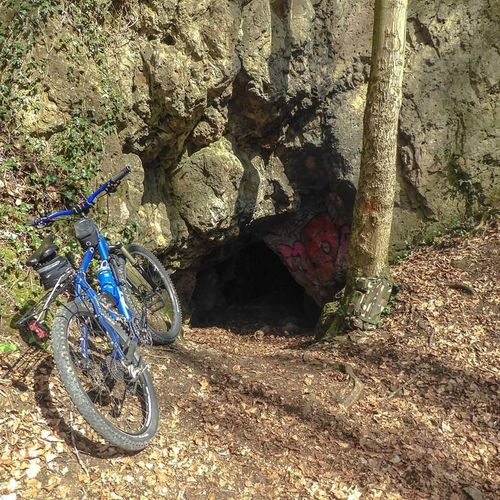 No People Nature Day MTB MTB Biking Lost Places Langendonk Höhle