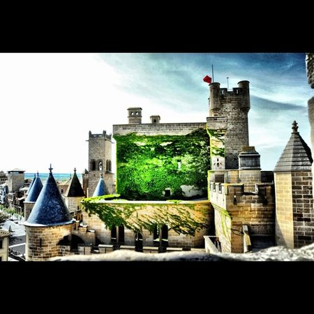 Para #diadelafotografia #worldphotographyday Castillo-Palacio de #Olite. (no iPhone) Olite Worldphotographyday Diadelafotografia