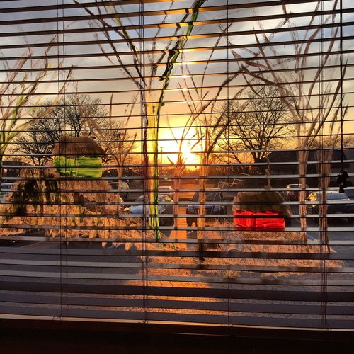 Interior Views Wintertime Outdoors Photograpghy  Showcase March City Life Orange Sky Cityscapes City Winter Sunset Destination Placement  Blinds Blind Shot Window Window View Looking Glass Inside Outside Window Paintings