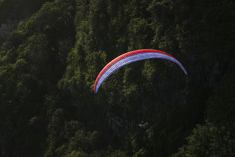 Person paragliding against trees on mountain