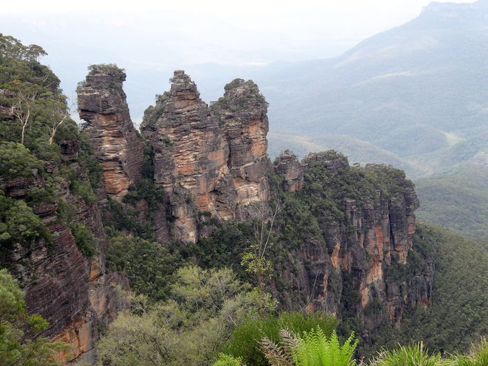 High Angle View Of Rock Formation Amidst Trees