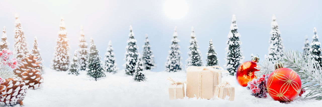 Panoramic view of christmas tree on snow covered field