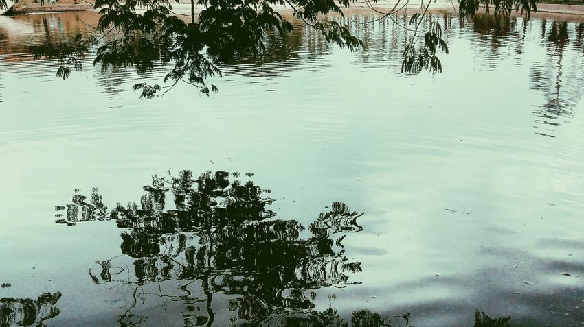 Lagoon Reflection Water Beauty In Nature No People Day Nature Tree Lake Outdoors Sky Nature Nature_collection Plants Water Reflections