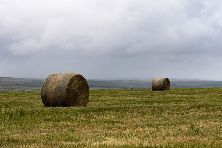 Hay bales in a field against a stormy sky in southern Alberta, Canada Bale  Landscape Land Field Plant Sky Agriculture Grass Cloud - Sky Hay Rural Scene Farm Nature Scenics - Nature Tranquil Scene Environment Tranquility No People Beauty In Nature Harvesting Outdoors