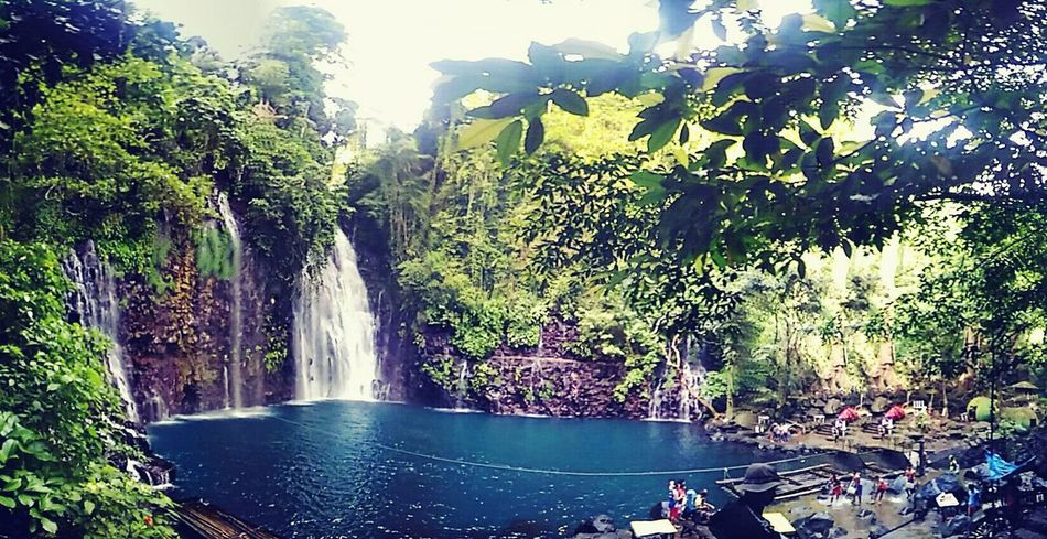 Philippine Sceneries Iligan City Tinago Falls Beauty In Nature Water Tree Scenics Travel Destinations Nature Fountain I Love Trekking Unwinding Vacations No People Waterfall Outdoors Landscape Sky Day