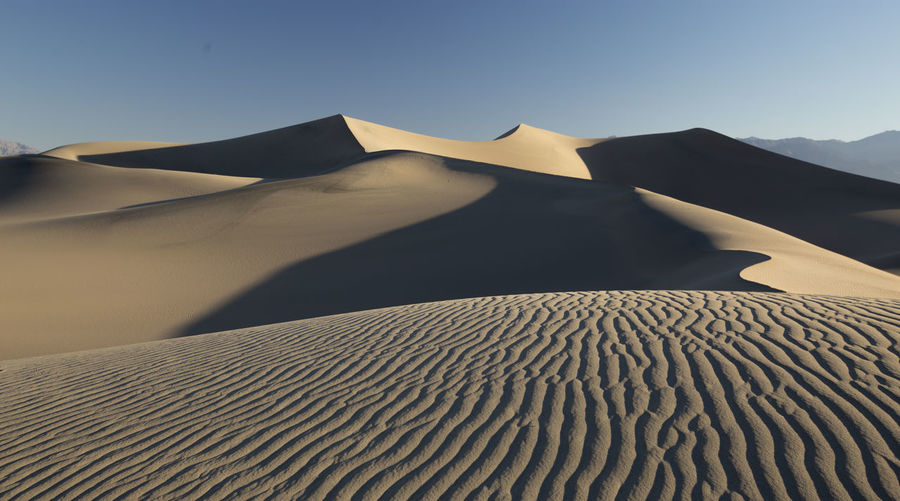 Scenics - Nature Sand Sky Desert Sand Dune Beauty In Nature Landscape Climate Land Tranquility Tranquil Scene Arid Climate Non-urban Scene Environment Nature No People Day Clear Sky Sunlight Remote Outdoors Isolation