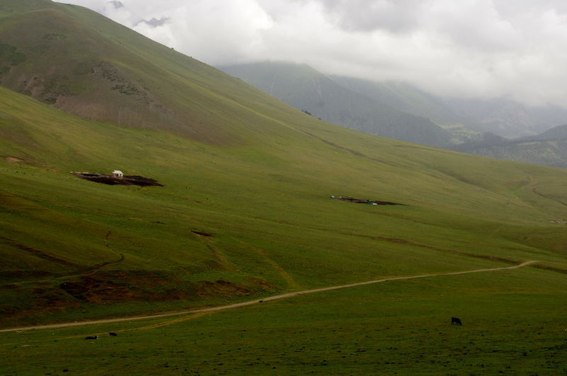 kirgizstan Farm Landscape Aerial View Rural Scene Nature Sky Green Color Cloud - Sky Dramatic Sky Tranquil Scene No People Scenics Outdoors Mountain Day