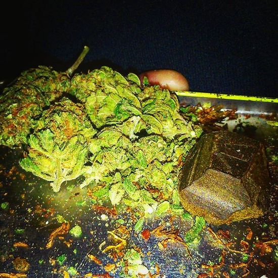 Highlife Marijuana Weedstagram Ganja Pollen Green Crystals MaryJane Iloveweed HighTimes