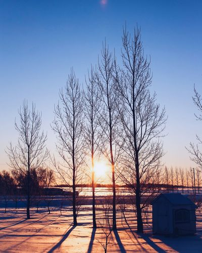 Sunrise Bare Tree Snow Tree Winter Cold Temperature Built Structure No People Sunset Nature Beauty In Nature Sunlight Clear Sky Building Exterior Architecture Outdoors Sky Sun Scenics Day