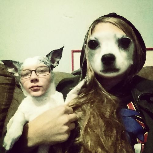 Face Swap Portrait Dog I Love My Dog