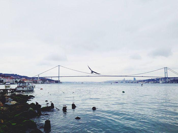 Cengelkoy Seaandsky Sea Relaxing EyeEmbestshots Iphoneonly Eyeemphotography ıstanbul, Turkey