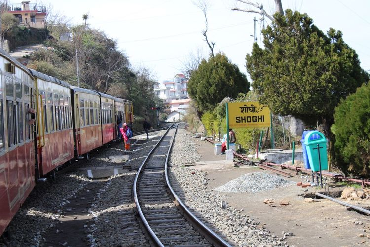 Kalka Shimla Railway Tree Plant Railroad Track Rail Transportation Track Transportation Mode Of Transportation Public Transportation Travel