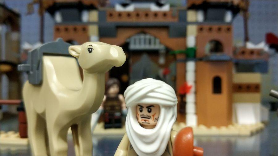Camel LEGO Lego Museum Close-up