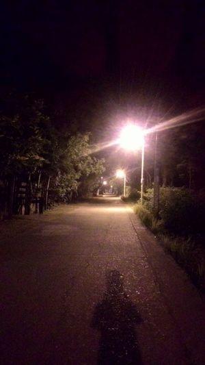 Streetlights in the neighborhood. Home Midnight