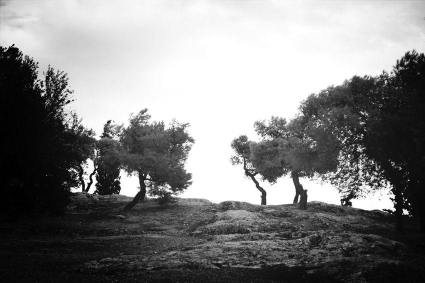 Path to The Sky Black & White Akropolis