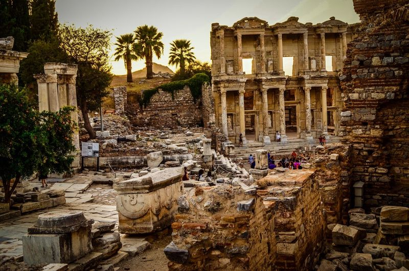 Architecture Built Structure History Tree The Past Building Exterior Old Ruin Ancient Tourism Travel Destinations Ruined Architectural Column Ancient Civilization