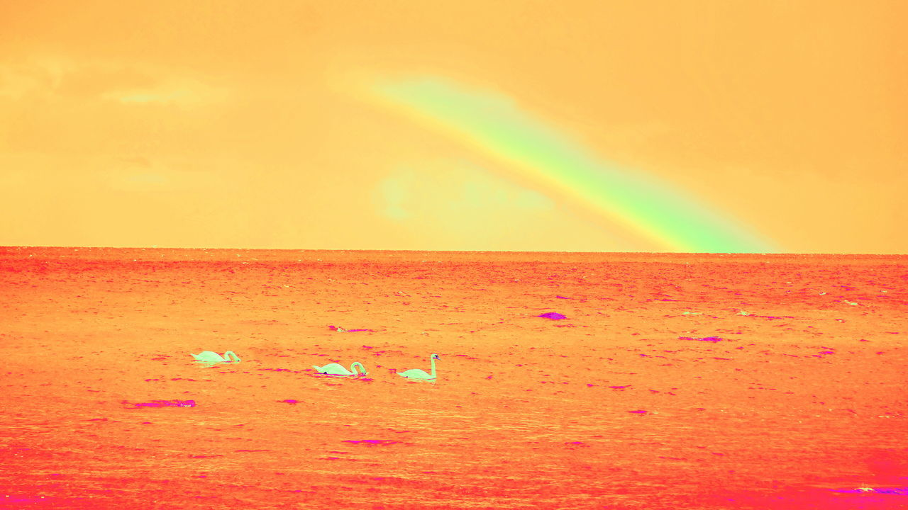multi colored, rainbow, sea, horizon over water, sunset, beauty in nature, nature, scenics, no people, sky, beach, tranquil scene, yellow, outdoors, red, spectrum, water, day